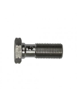 BOLT M10X1,00 STEEL 25 MM